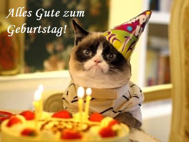 Alles Gute zum Geburtstag! Katze, Kuchen, Kerzen