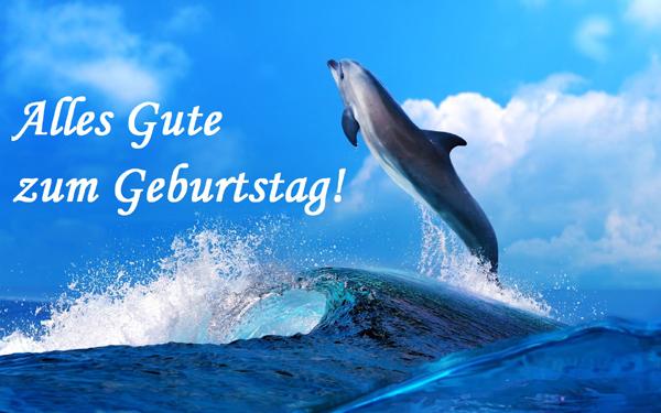Alles Gute zum Geburtstag! Delphin, Meer, Ozean