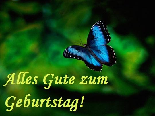 Alles Gute zum Geburtstag! Blauer Schmetterling